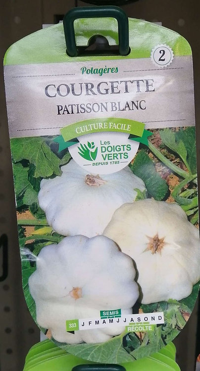 Courgette patisson blanc n°2