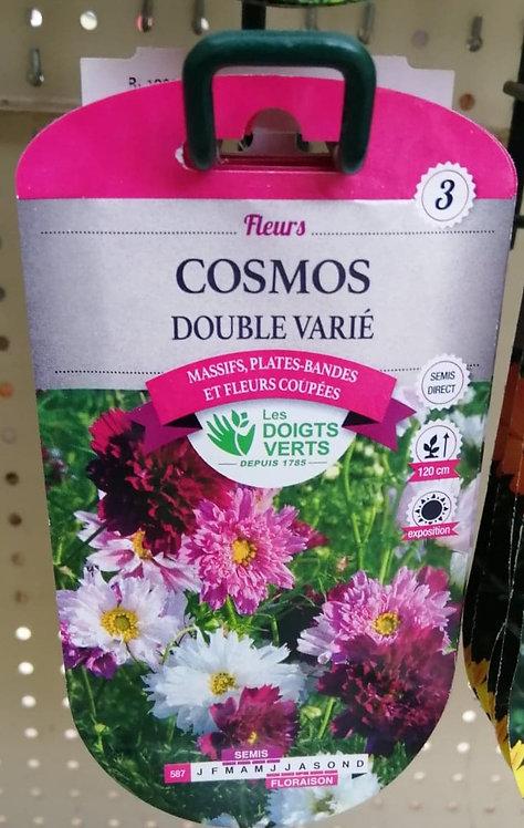 Cosmos Double Varié n°3