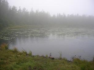 Garfield Pond