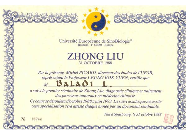 TAI-JI-QUAN3.jpg