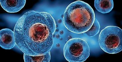 stock-photo-embryonic-stem-cells-cellula