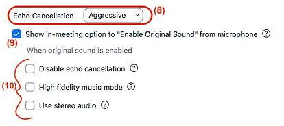 Zoom Advanced Audio