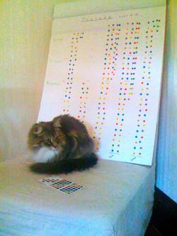 Practice Challenge helper