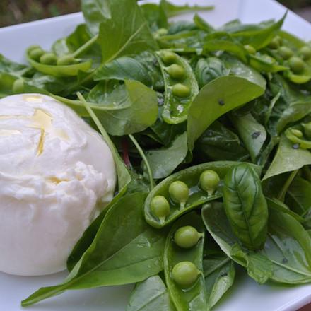 Snap Pea Salad with Burrata