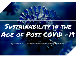 Sustainability in the Age of Post COVID -19