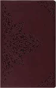 ESV Premium Gift Bible Brown 591