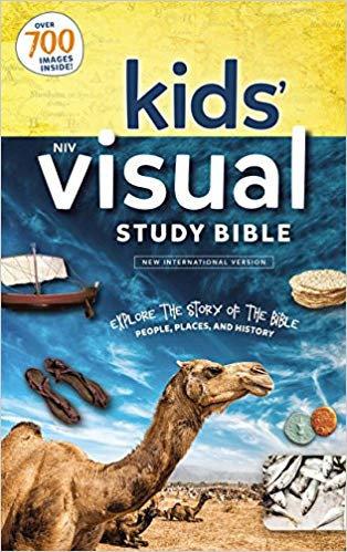 NIV KIDS VISUAL STUDY BIBLE HC CHILDREN AGE 8 - 12