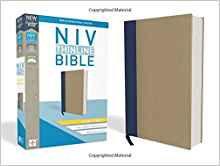 NIV Thinline Giant 570 Hard cover