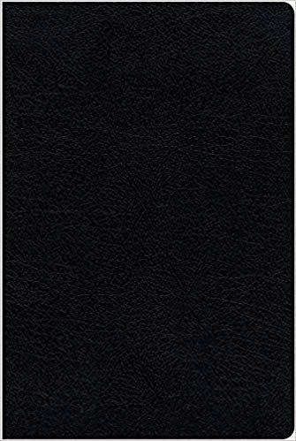 BIBLE NIV THINLINE INDEX 669 Black Bonded 9.2 PT