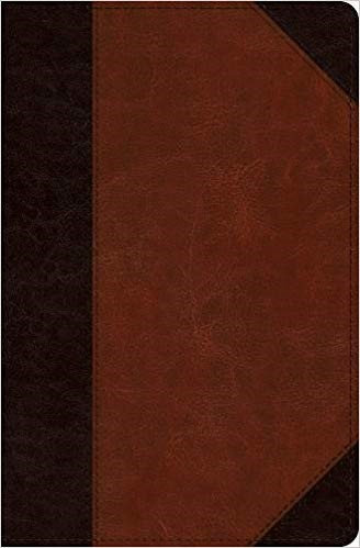 BIBLE ESV VERSE BY VERSE 082 Brown Imitation Trytone Ref 9 PT