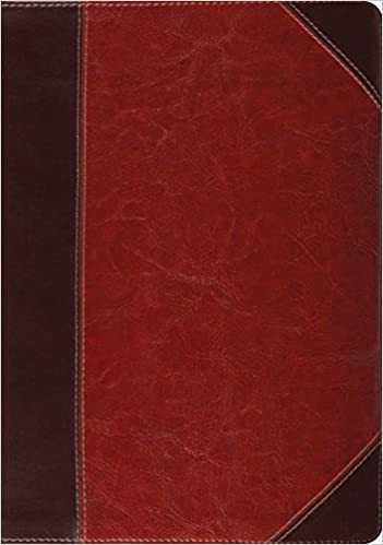 ESV STUDY BROWN TRUTONE 9 PT