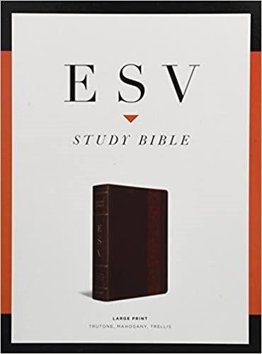 ESV STUDY LARGE MAGAGANY TRUTONE P1  11 PT