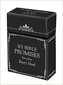 PROMISE BOX 101 BIBLE PROMISES FOR YOUR EVERY NEED