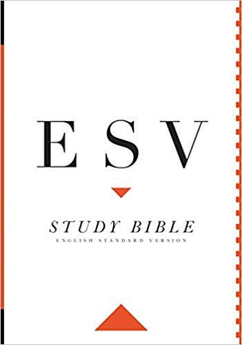 ESV STUDY HC 9 PT