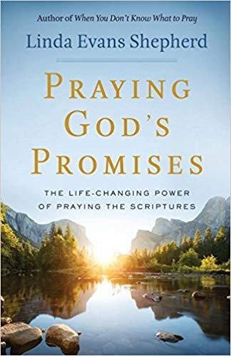 PRAYING GODS PROMISES  - LINDA SHEPHERD