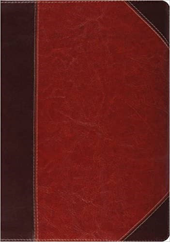 ESV STUDY INDEX BROWN TRUTONE 9 PT E54404