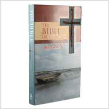Bible in 366 Days for Men HC 424