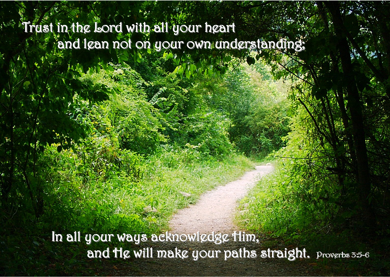 07 July - Pathway (Proverbs 3-5-6).png