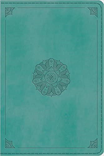 BIBLE ESV LARGE PERSONAL 082 TEAL TRUTONE 12 PT