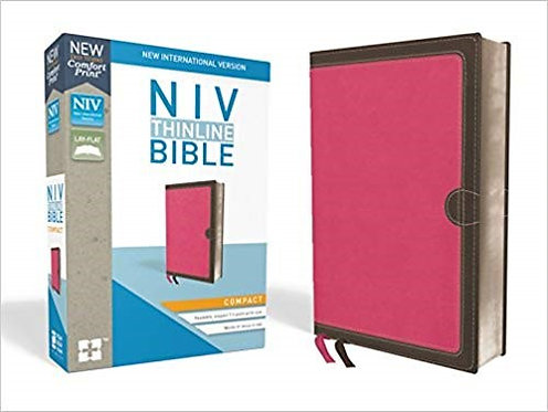 BIBLE NIV COMPACT 273 Red Leathersoft Thinline 7.3 PT