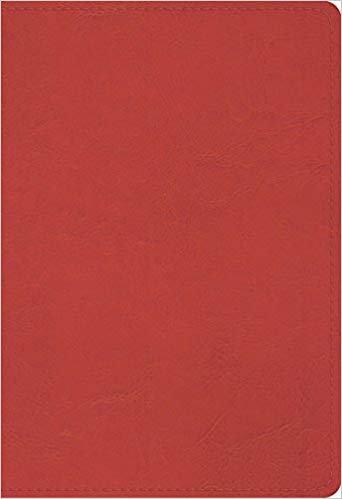 BIBLE ESV STUDENT STUDY 731 Pink Imitation Trutone 8 PT