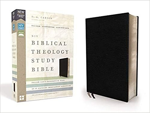 NIV BIBLICAL THEOLOGY STUDY INDEX BLACK BONDED V8  9.1 PT