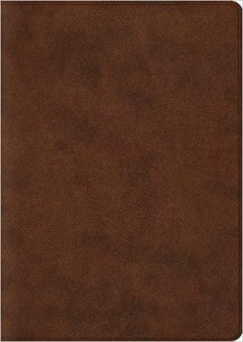 ESV ARCHAEOLOGY BROWN TRUTONE 416 9 PT