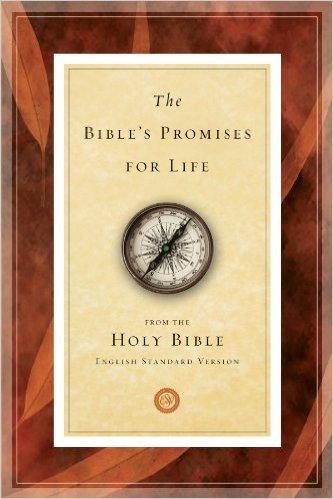 Bible's Promises For Life ESV Christian Living