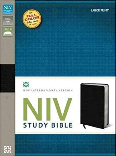 NIV STUDY LARGE INDEX BIBLE CS BLACK BONDED 10 PT RL