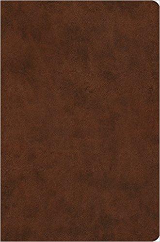ESV Value Compact 591 Brown Trutone