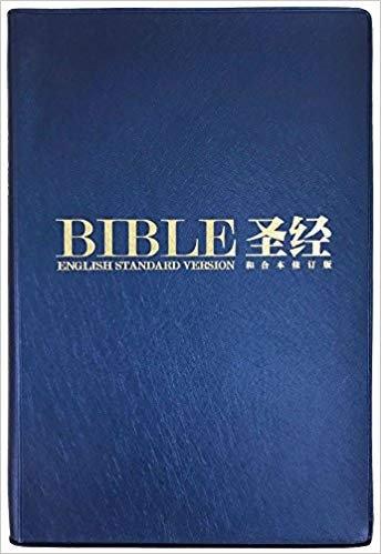 BIBLE CHINESE ENGLISH CUV ESV 509 BLUE VINYL REVISED RCUVSS62PL