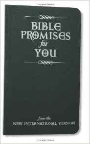 BIBLE PROMISES FOR YOU 881 NIV
