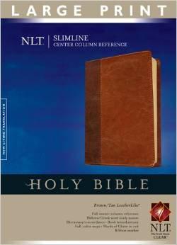 NLT Slimline Bible Center Column Index Ref 514