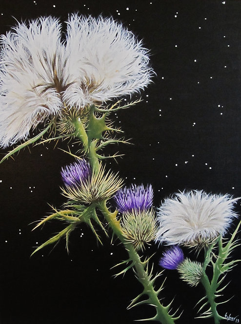 Thistle - SOLD