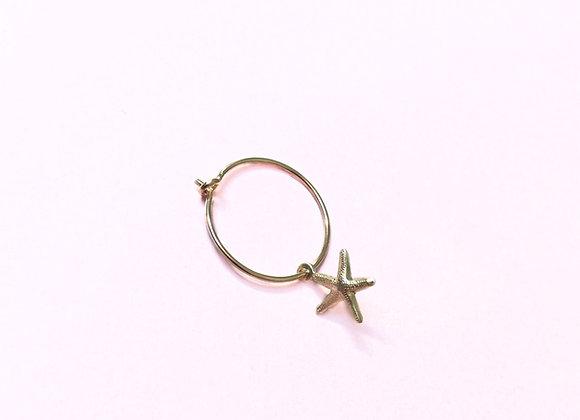 petite créole étoile de mer
