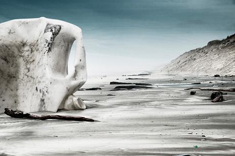 Ivory | AFTER THE FUTURE — Océan Atlantique,France | 18 février 2014