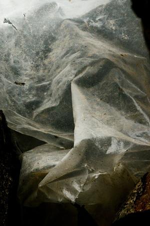 Pietà | ENOSIM — Cala Lunga, San Pietro Island, Sardinia | 22 October 2012