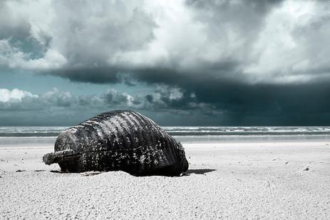 Carnage | AFTER THE FUTURE — Océan Atlantique, France | 21 février 2014