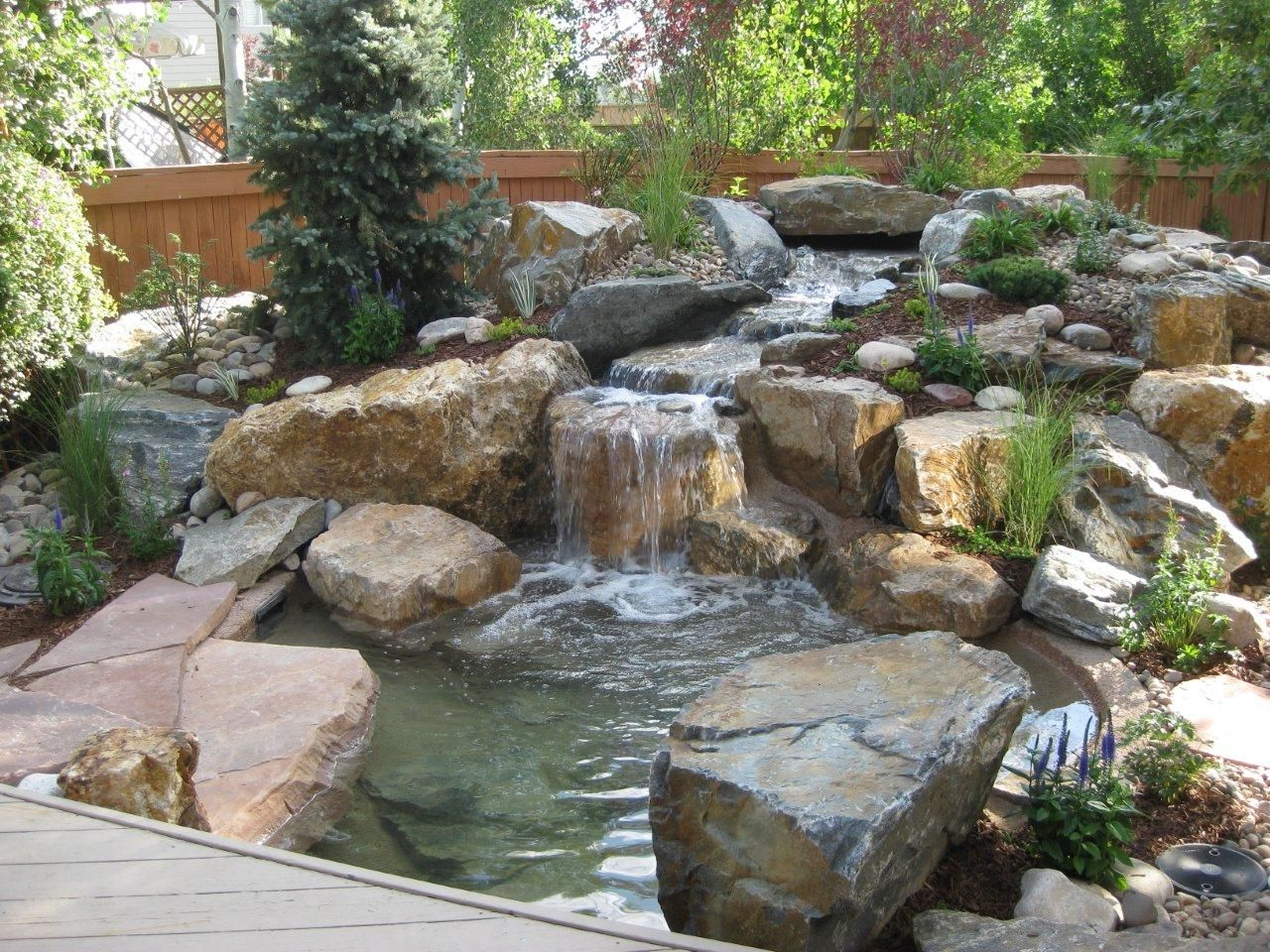 -backyard-pond 3019 543n65wyer6t5wure