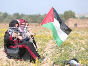 Comrade Sisters: Women and Armed Resistance in Palestine