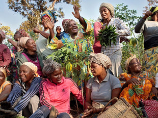 The Women Fighting for Peace in Cameroon
