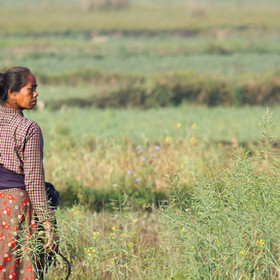 Feminist Foreign Policy through Food Sovereignty