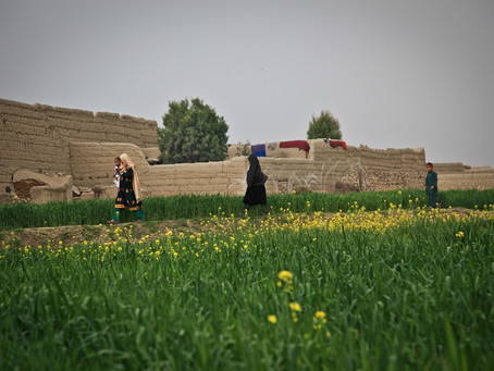 Closed Borders and Hostile Receptions Await Afghan Refugees