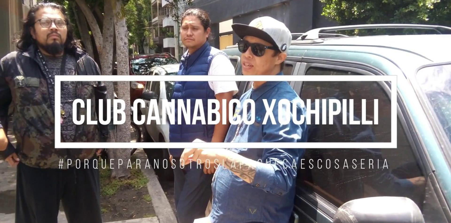 Club Cannabico Xochipilli ante respuesta de la autoridad sanitaria COFEPRIS