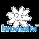 bromelia-transparent.png