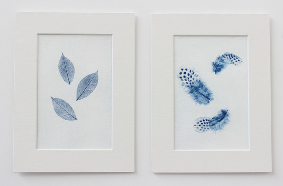 Feathers/ leaves