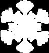 White Snowflake