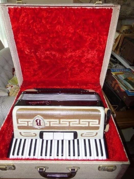 wonderfull vintage accordian in mint condition