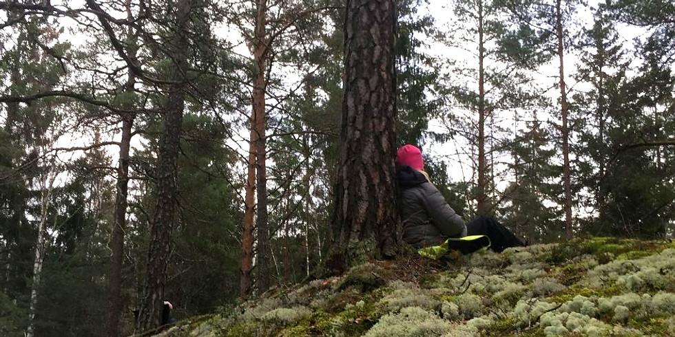 Södra Törnskogen, Sollentuna: Långfredag med skogsbad