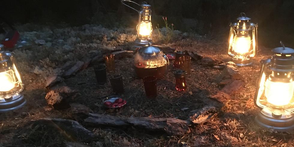 Ursvik, Sundbyberg: Kvällsskogsbad i skymningen